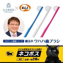 魔法のワハハ歯ブラシ(3本セット)