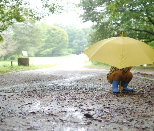 [クロワールスタッフブログ]雨の日は…