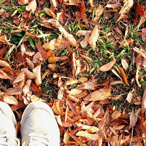 [クロワールスタッフブログ]毎日の生活を見直すきっかけ「万歩計」